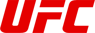 UFC picks from expert sports handicappers